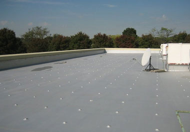 flat roof: polyurethane roof coatings